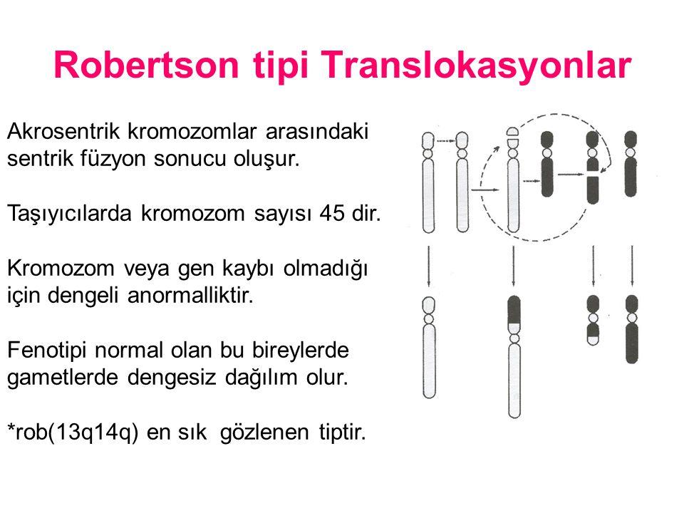 Akrosentrik kromozomlar arasındaki sentrik füzyon sonucu oluşur. Taşıyıcılarda kromozom sayısı 45 dir. Kromozom veya gen kaybı olmadığı için dengeli a