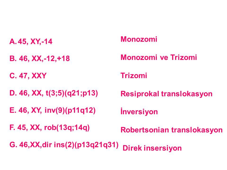 A.45, XY,-14 B. 46, XX,-12,+18 C. 47, XXY D. 46, XX, t(3;5)(q21;p13) E. 46, XY, inv(9)(p11q12) F. 45, XX, rob(13q;14q) G. 46,XX,dir ins(2)(p13q21q31)