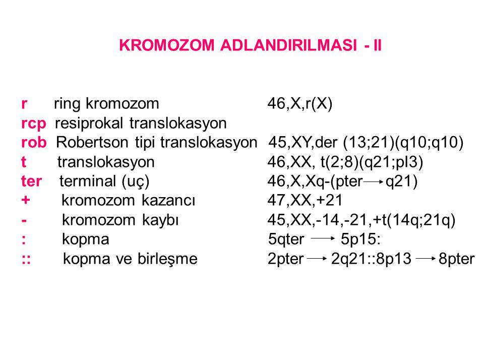 KROMOZOM ADLANDIRILMASI - II r ring kromozom 46,X,r(X) rcp resiprokal translokasyon rob Robertson tipi translokasyon 45,XY,der (13;21)(q10;q10) t tran