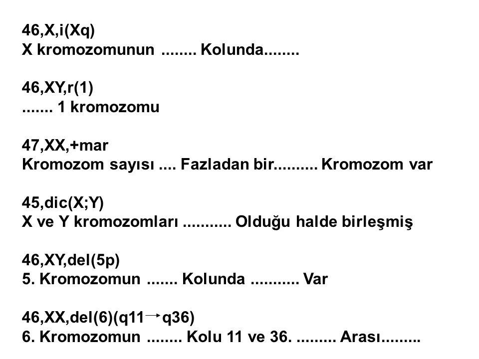 46,X,i(Xq) X kromozomunun........ Kolunda........ 46,XY,r(1)....... 1 kromozomu 47,XX,+mar Kromozom sayısı.... Fazladan bir.......... Kromozom var 45,