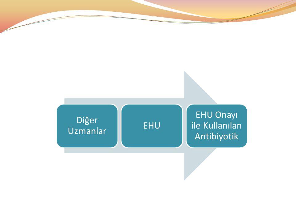 Diğer Uzmanlar EHU EHU Onayı ile Kullanılan Antibiyotik