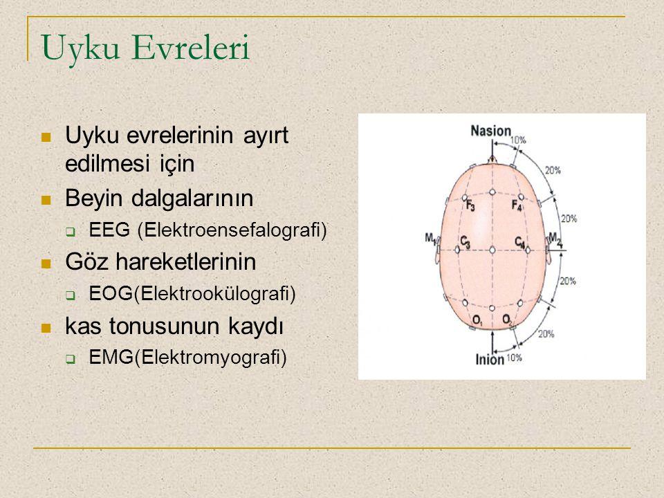 Uyku Evreleri Uyku evrelerinin ayırt edilmesi için Beyin dalgalarının  EEG (Elektroensefalografi) Göz hareketlerinin  EOG(Elektrookülografi) kas ton