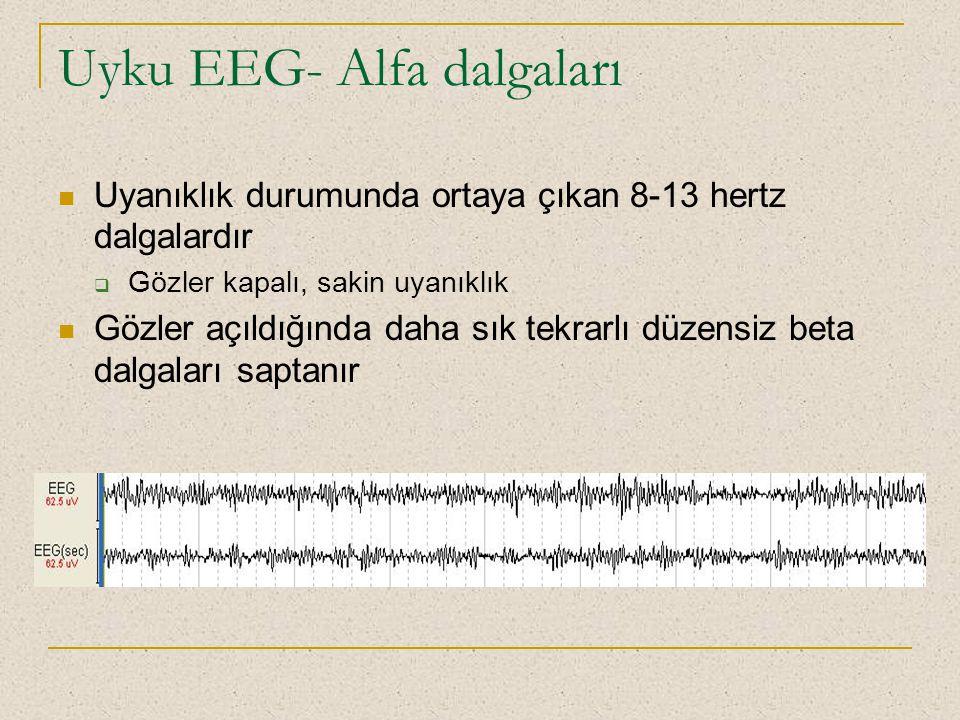 Uyku EEG- Alfa dalgaları Uyanıklık durumunda ortaya çıkan 8-13 hertz dalgalardır  Gözler kapalı, sakin uyanıklık Gözler açıldığında daha sık tekrarlı