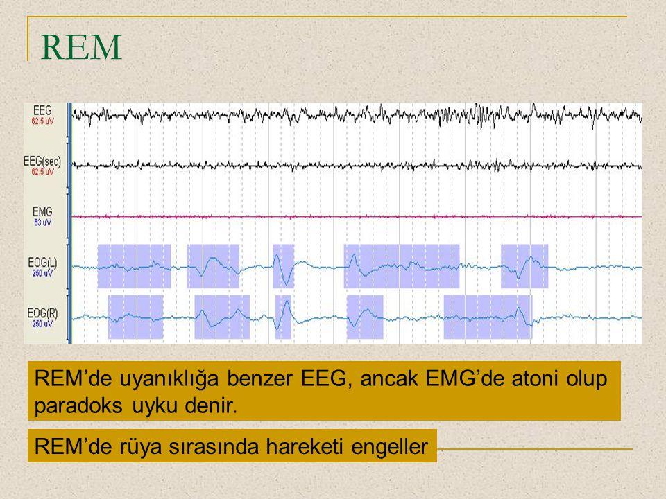 REM REM'de uyanıklığa benzer EEG, ancak EMG'de atoni olup paradoks uyku denir. REM'de rüya sırasında hareketi engeller