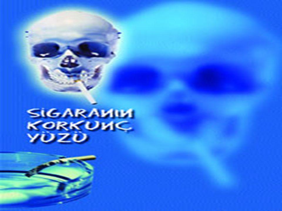 Sigara içmek, zararlı alışkanlıklar içinde toplumsal yaygınlığı yönünden ilk sırada yer alır.
