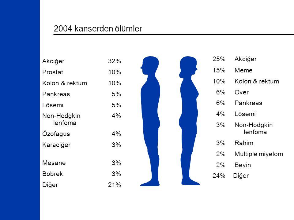 2004 kanserden ölümler 25%Akciğer 15%Meme 10%Kolon & rektum 6%Over 6%Pankreas 4%Lösemi 3%Non-Hodgkin lenfoma 3%Rahim 2%Multiple miyelom 2%Beyin 24% Diğer Akciğer32% Prostat10% Kolon & rektum10% Pankreas5% Lösemi5% Non-Hodgkin4% lenfoma Özofagus4% Karaciğer3% Mesane3% Böbrek3% Diğer21%