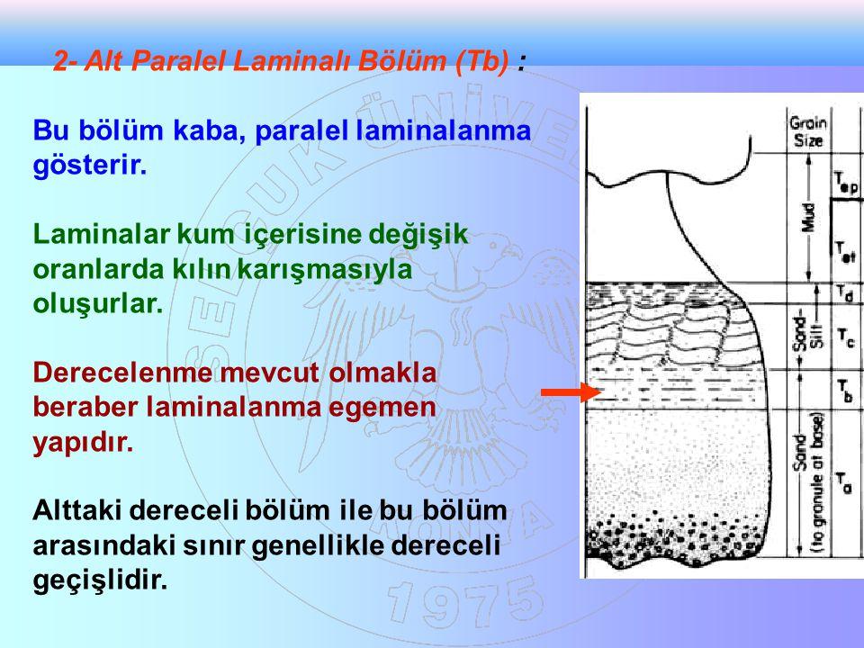 2- Alt Paralel Laminalı Bölüm (Tb) : Bu bölüm kaba, paralel laminalanma gösterir. Laminalar kum içerisine değişik oranlarda kılın karışmasıyla oluşurl