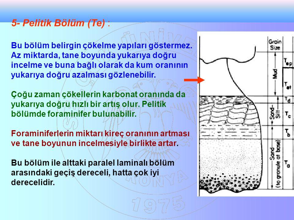 5- Pelitik Bölüm (Te) : Bu bölüm belirgin çökelme yapıları göstermez. Az miktarda, tane boyunda yukarıya doğru incelme ve buna bağlı olarak da kum ora