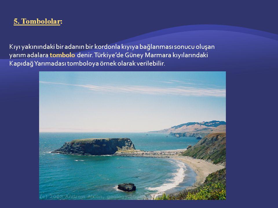 5. Tombololar : Kıyı yakınındaki bir adanın bir kordonla kıyıya bağlanması sonucu oluşan yarım adalara tombolo denir. Türkiye'de Güney Marmara kıyılar