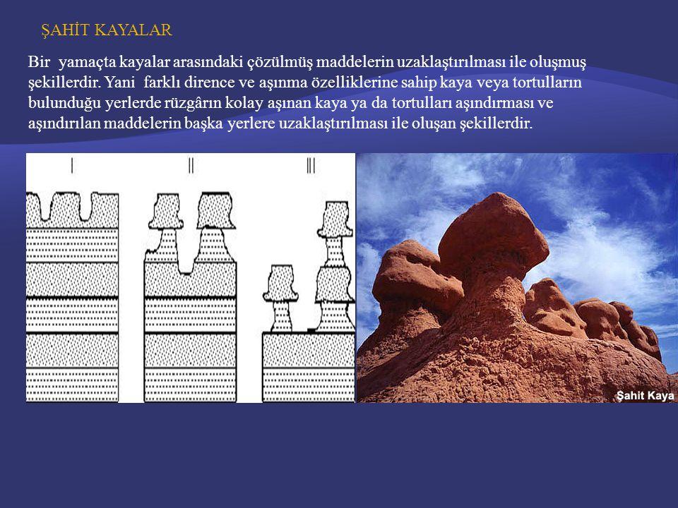 ŞAHİT KAYALAR Bir yamaçta kayalar arasındaki çözülmüş maddelerin uzaklaştırılması ile oluşmuş şekillerdir.