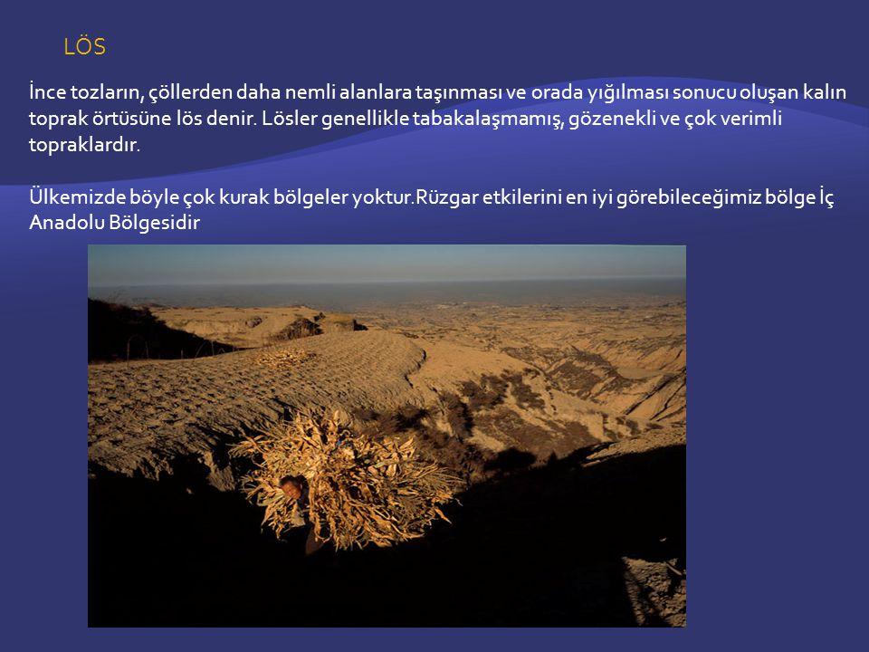 LÖS İnce tozların, çöllerden daha nemli alanlara taşınması ve orada yığılması sonucu oluşan kalın toprak örtüsüne lös denir.