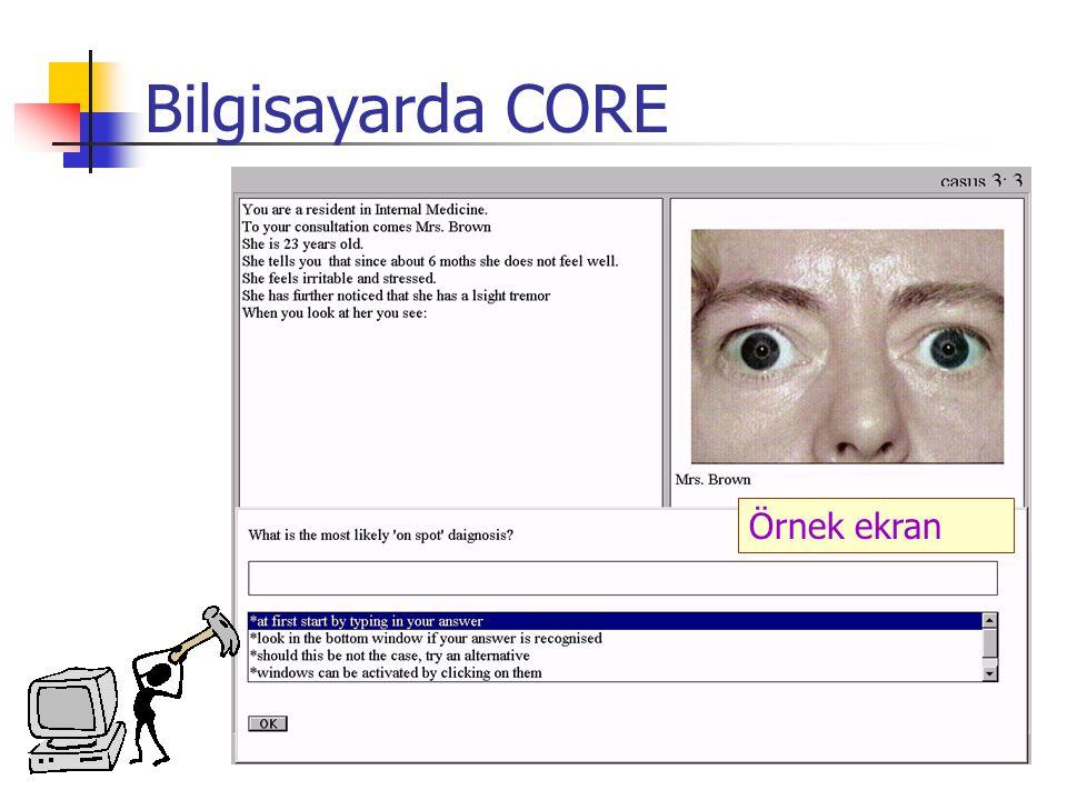 Örnek ekran