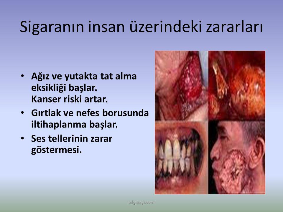 Sigaranın insan üzerindeki zararları Ağız ve yutakta tat alma eksikliği başlar. Kanser riski artar. Gırtlak ve nefes borusunda iltihaplanma başlar. Se