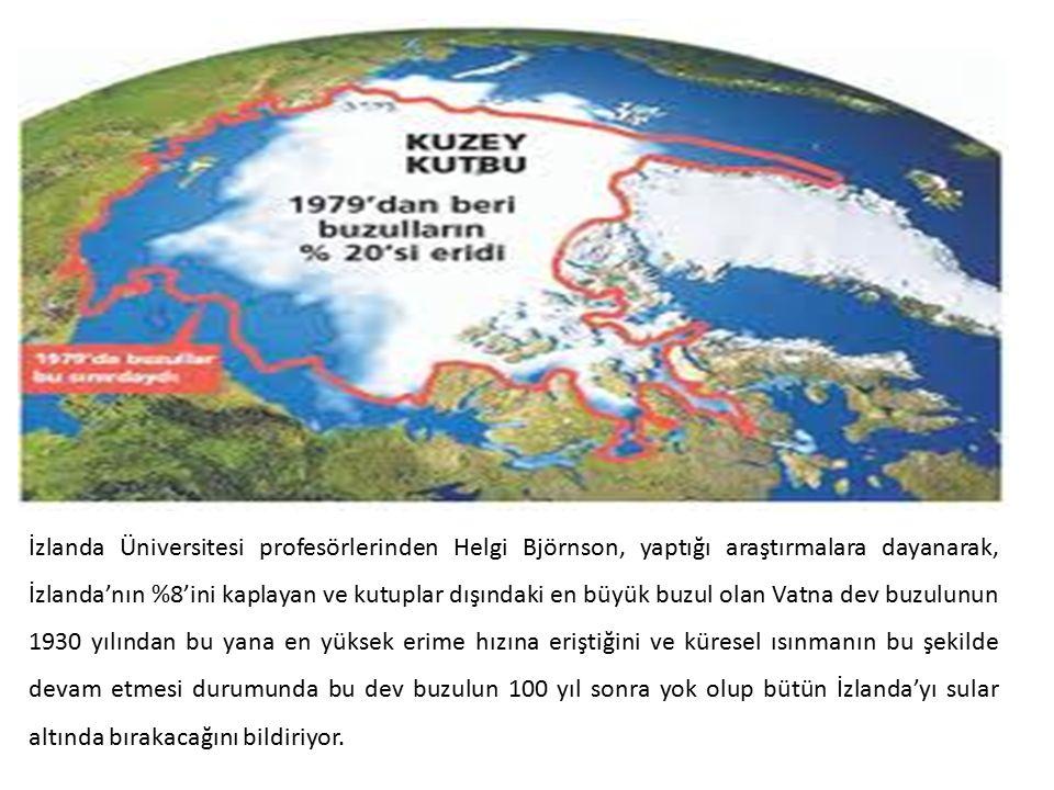 İzlanda Üniversitesi profesörlerinden Helgi Björnson, yaptığı araştırmalara dayanarak, İzlanda'nın %8'ini kaplayan ve kutuplar dışındaki en büyük buzu