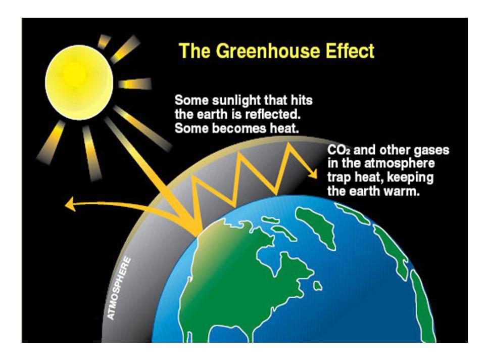Günümüzde temel sera gazları karbondioksit (CO2), Kloroflorokarbonlar (CFCs), metan (CH4), diazotmonoksit (N2O) ve ozon olarak (O3) bilinmektedir.