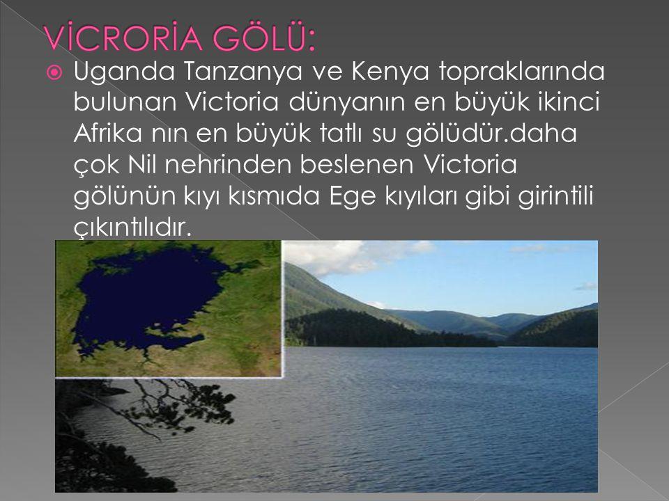  Uganda Tanzanya ve Kenya topraklarında bulunan Victoria dünyanın en büyük ikinci Afrika nın en büyük tatlı su gölüdür.daha çok Nil nehrinden beslene