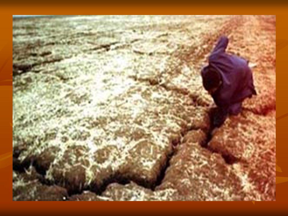Bunun yanı sıra kuraklık riski göz önüne alınarak bütün sektörlerde planlama yapılmalıdır.