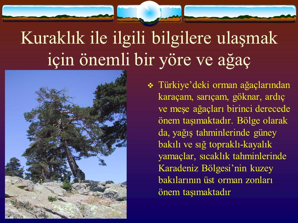 Kuraklık ile ilgili bilgilere ulaşmak için önemli bir yöre ve ağaç  Türkiye'deki orman ağaçlarından karaçam, sarıçam, göknar, ardıç ve meşe ağaçları