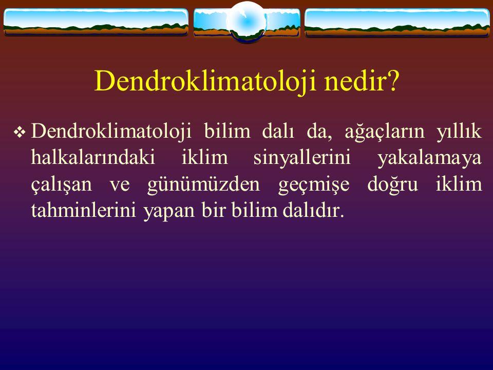 Dendroklimatoloji nedir?  Dendroklimatoloji bilim dalı da, ağaçların yıllık halkalarındaki iklim sinyallerini yakalamaya çalışan ve günümüzden geçmiş