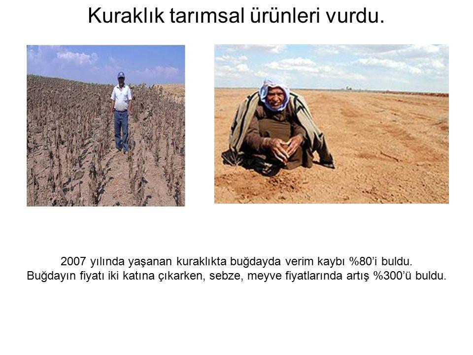 Kuraklık tarımsal ürünleri vurdu. 2007 yılında yaşanan kuraklıkta buğdayda verim kaybı %80'i buldu.