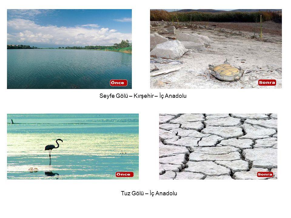 Seyfe Gölü – Kırşehir – İç Anadolu Tuz Gölü – İç Anadolu