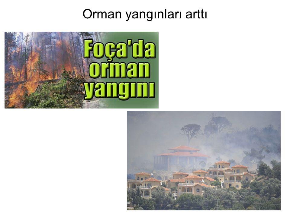 Orman yangınları arttı