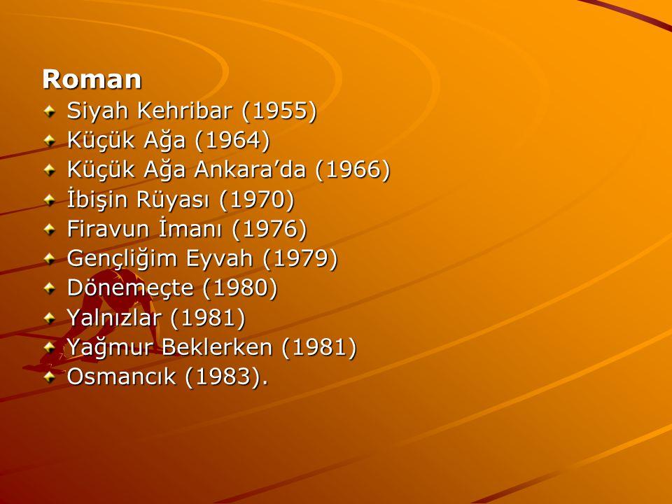 Roman Siyah Kehribar (1955) Küçük Ağa (1964) Küçük Ağa Ankara'da (1966) İbişin Rüyası (1970) Firavun İmanı (1976) Gençliğim Eyvah (1979) Dönemeçte (1980) Yalnızlar (1981) Yağmur Beklerken (1981) Osmancık (1983).