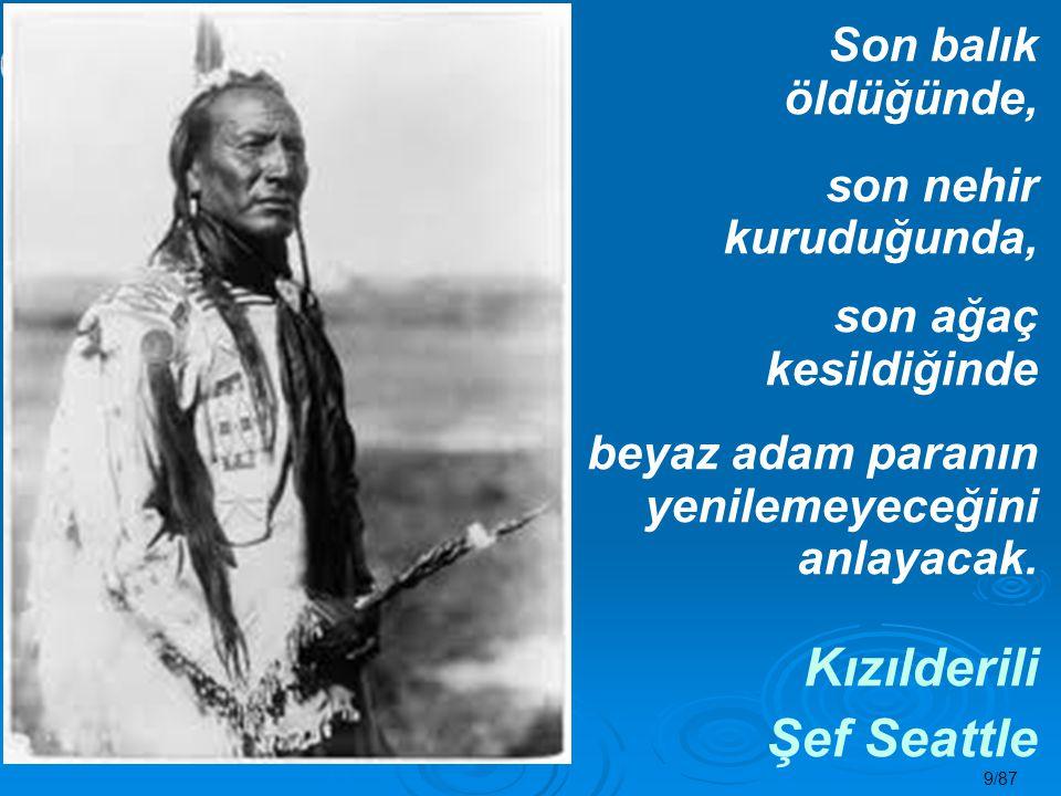 30/87 ENERJİ TASARRUFU NE ZAMAN GÜNDEME GELDİ.
