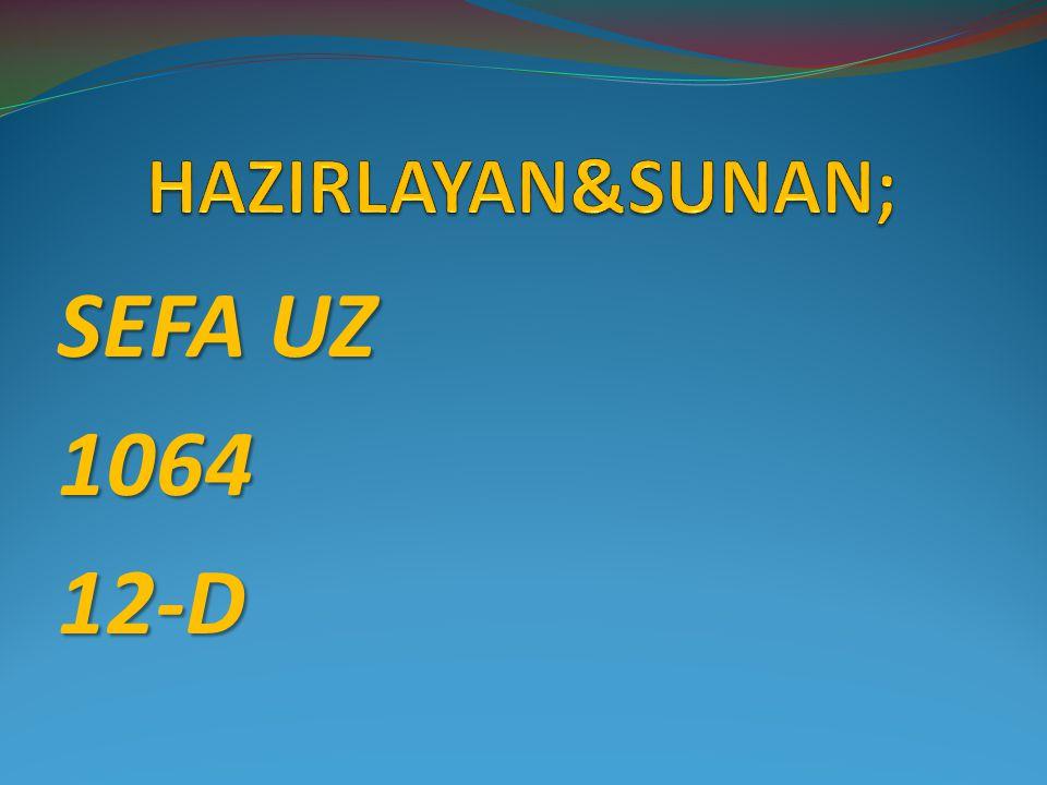 SEFA UZ 106412-D