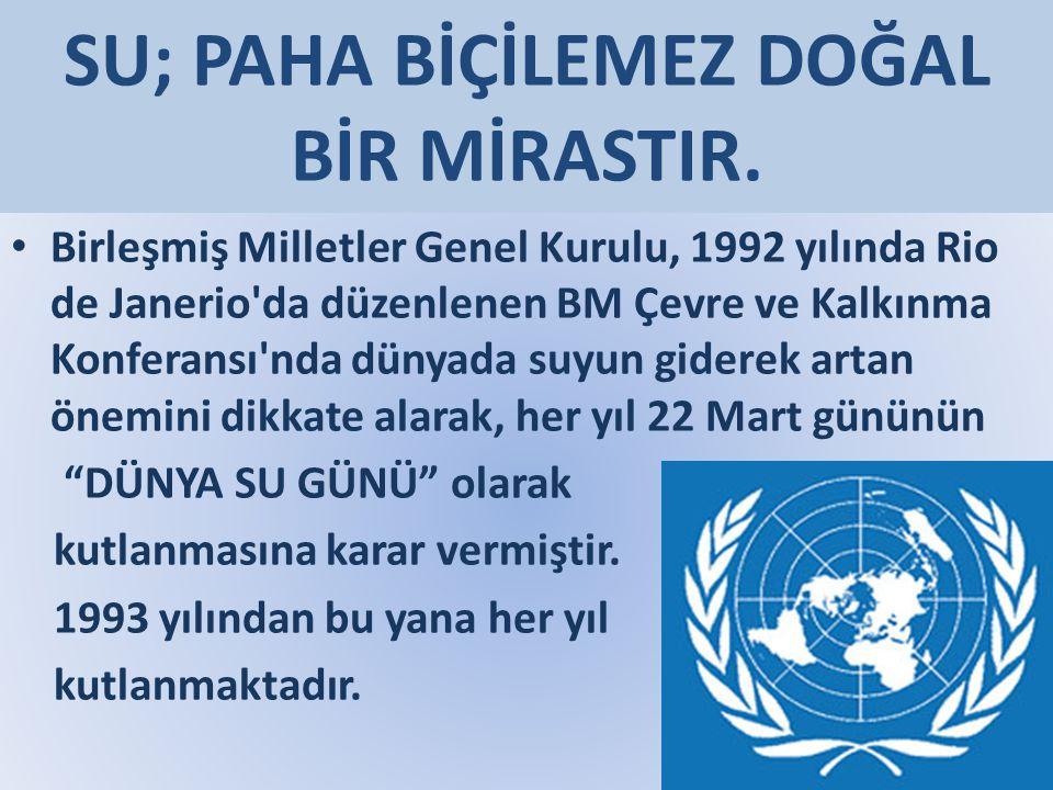SU; PAHA BİÇİLEMEZ DOĞAL BİR MİRASTIR. Birleşmiş Milletler Genel Kurulu, 1992 yılında Rio de Janerio'da düzenlenen BM Çevre ve Kalkınma Konferansı'nda
