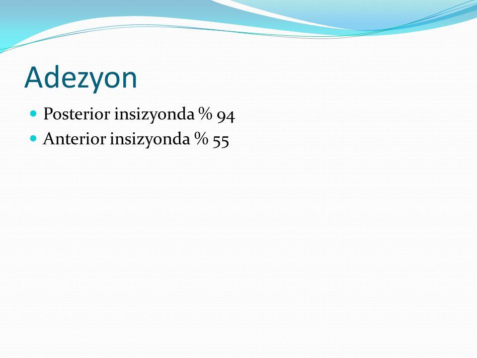 Adezyon Posterior insizyonda % 94 Anterior insizyonda % 55