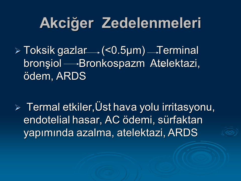 Akciğer Zedelenmeleri  Toksik gazlar (<0.5µm) Terminal bronşiol Bronkospazm Atelektazi, ödem, ARDS  Termal etkiler,Üst hava yolu irritasyonu, endotelial hasar, AC ödemi, sürfaktan yapımında azalma, atelektazi, ARDS
