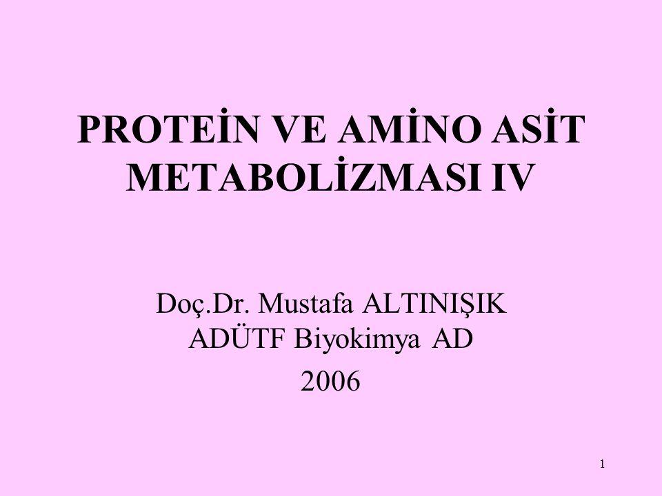 1 PROTEİN VE AMİNO ASİT METABOLİZMASI IV Doç.Dr. Mustafa ALTINIŞIK ADÜTF Biyokimya AD 2006