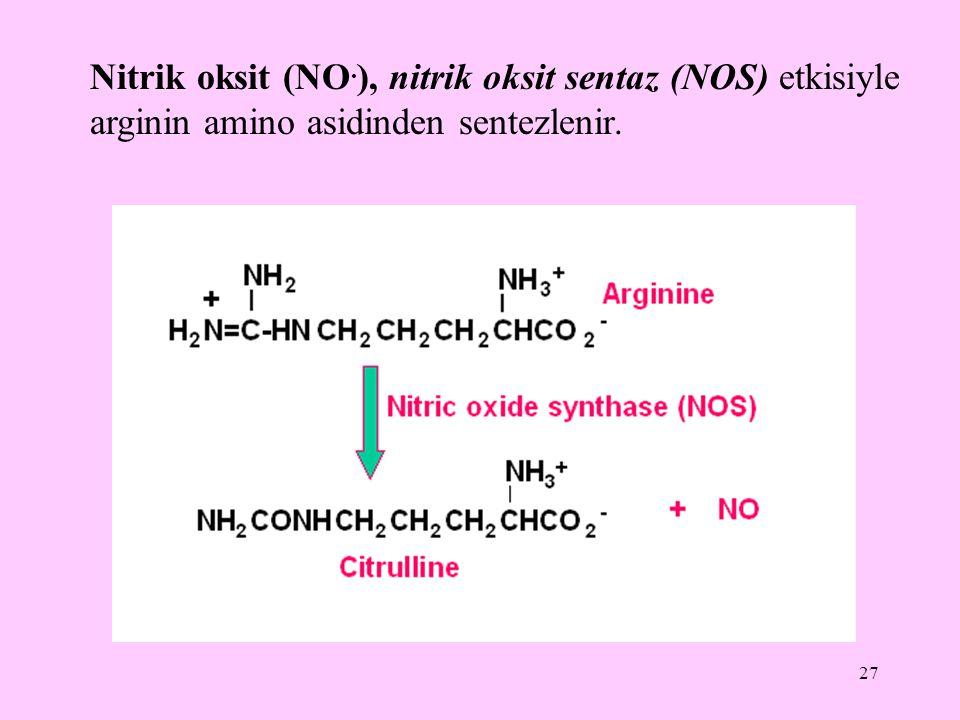 27 Nitrik oksit (NO. ), nitrik oksit sentaz (NOS) etkisiyle arginin amino asidinden sentezlenir.