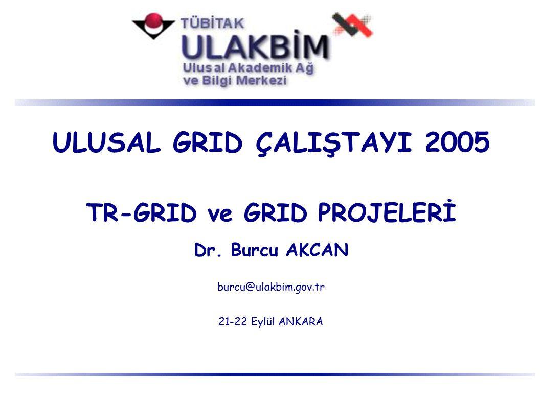 TR-GRID ve GRID PROJELERİ Grid Grid Projeleri TR-Grid Girişimi TR-Grid Altyapı Projesi AB 6.