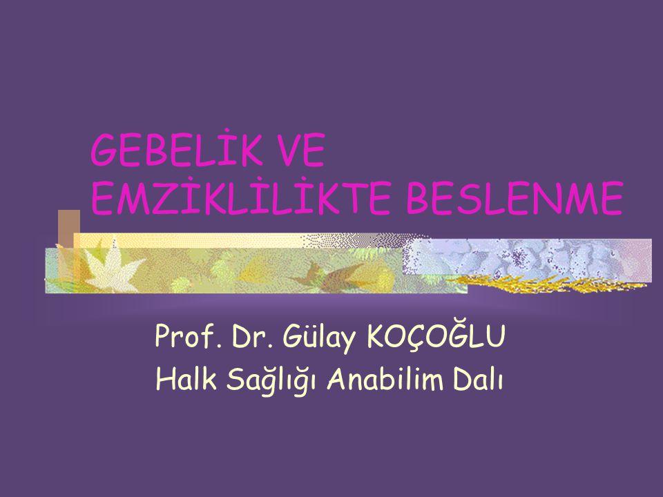 GEBELİK VE EMZİKLİLİKTE BESLENME Prof. Dr. Gülay KOÇOĞLU Halk Sağlığı Anabilim Dalı