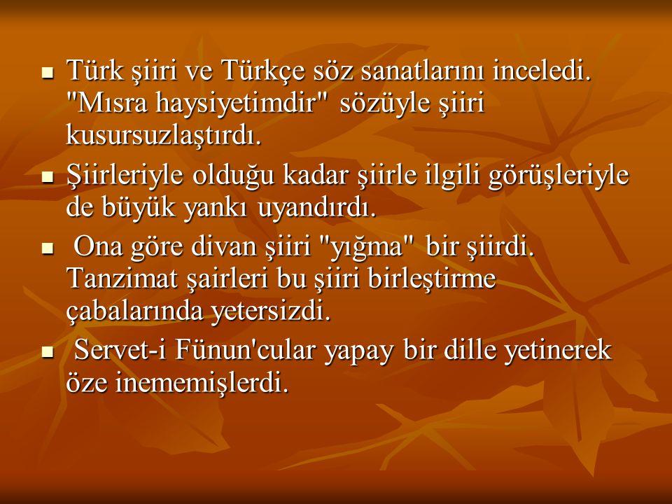 Türk şiiri ve Türkçe söz sanatlarını inceledi.