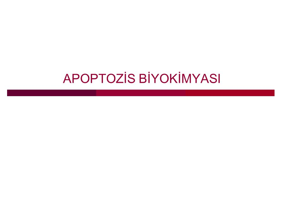 APOPTOZİS BİYOKİMYASI