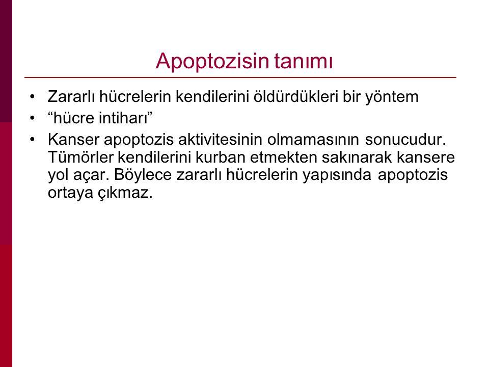 Apoptozisin tanımı Zararlı hücrelerin kendilerini öldürdükleri bir yöntem hücre intiharı Kanser apoptozis aktivitesinin olmamasının sonucudur.