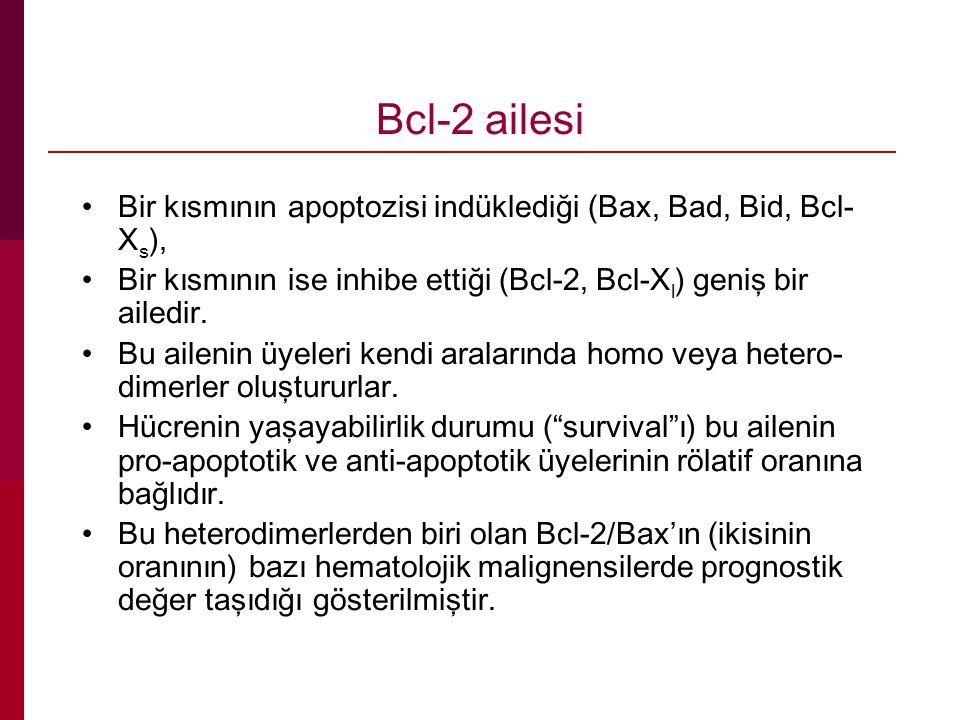 Bcl-2 ailesi Bir kısmının apoptozisi indüklediği (Bax, Bad, Bid, Bcl- X s ), Bir kısmının ise inhibe ettiği (Bcl-2, Bcl-X l ) geniş bir ailedir. Bu ai