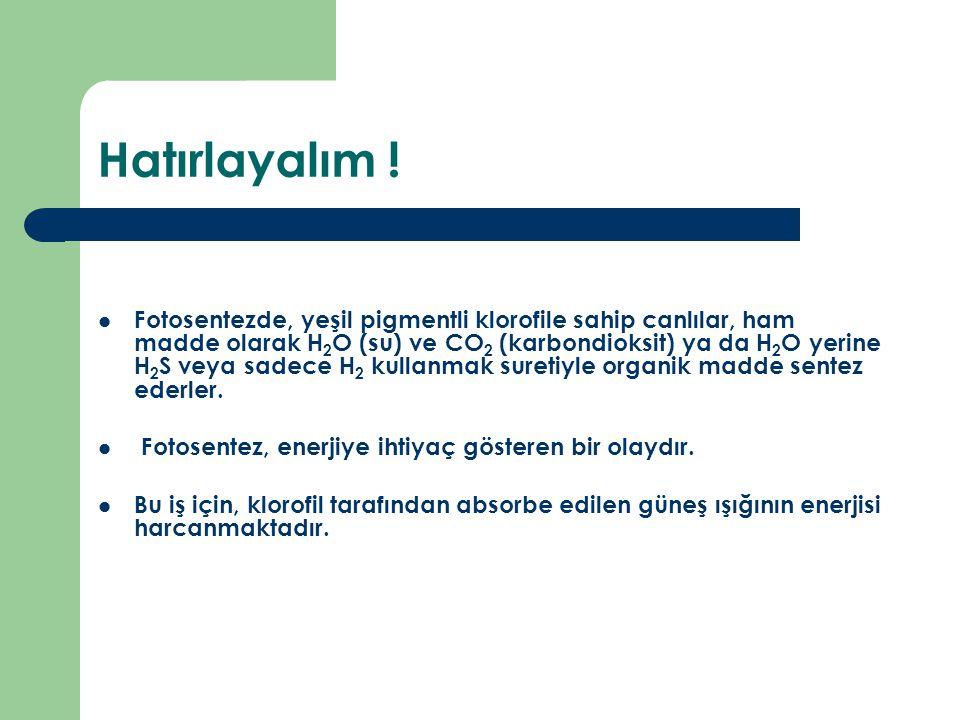 Hatırlayalım ! Fotosentezde, yeşil pigmentli klorofile sahip canlılar, ham madde olarak H 2 O (su) ve CO 2 (karbondioksit) ya da H 2 O yerine H 2 S ve