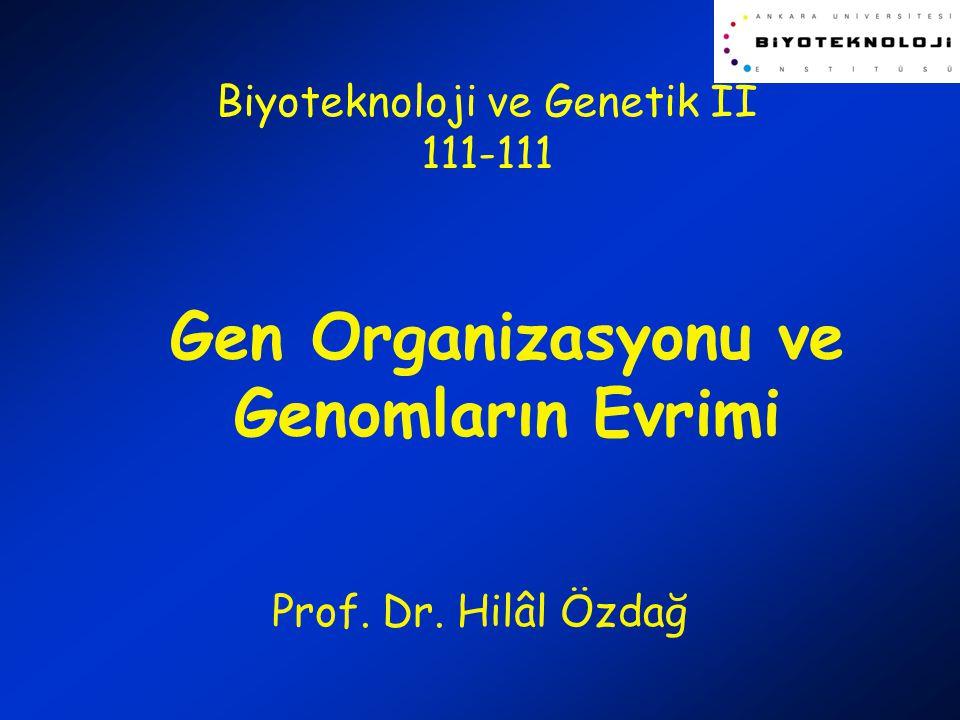 Gen Organizasyonu ve Genomların Evrimi Prof. Dr. Hilâl Özdağ Biyoteknoloji ve Genetik II 111-111