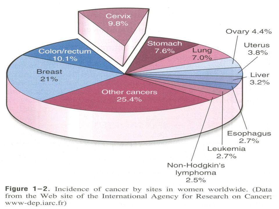 Serviks kanserinin etkeni nedir.