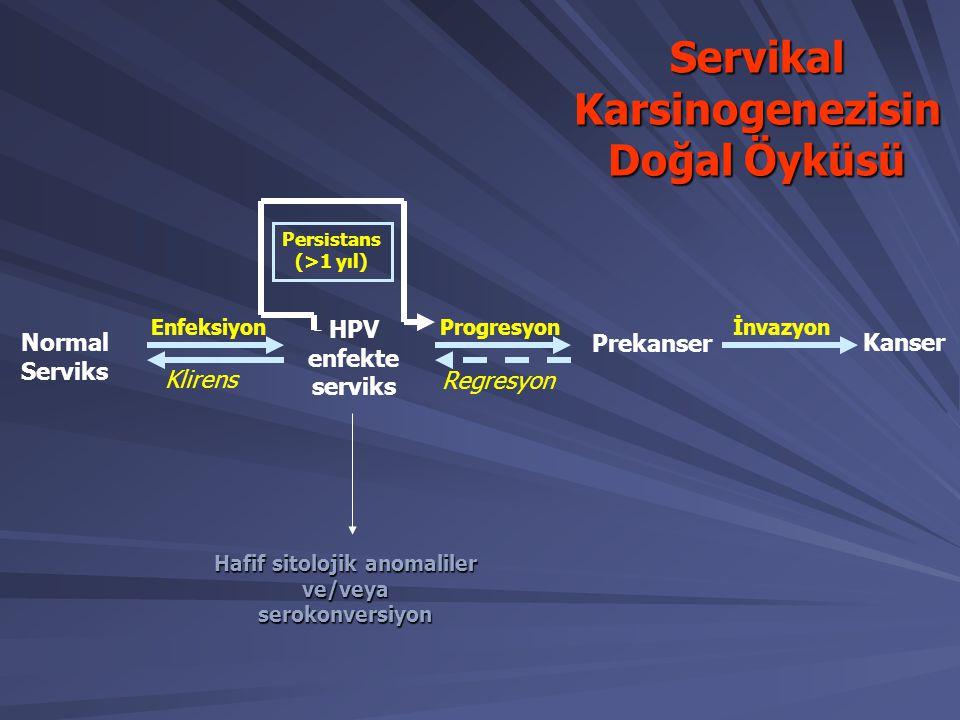 Normal Serviks HPV enfekte serviks Prekanser Kanser Enfeksiyon Klirens Progresyon Regresyon İnvazyon Persistans (>1 yıl) ServikalKarsinogenezisin Doğa