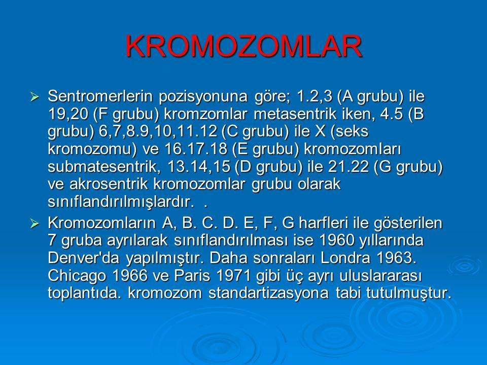 Kromozomlar Sentromerin yerine göre kromozomlar sınflandırılırlar Sentromere göre kısa ve uzun kol taşırlar.