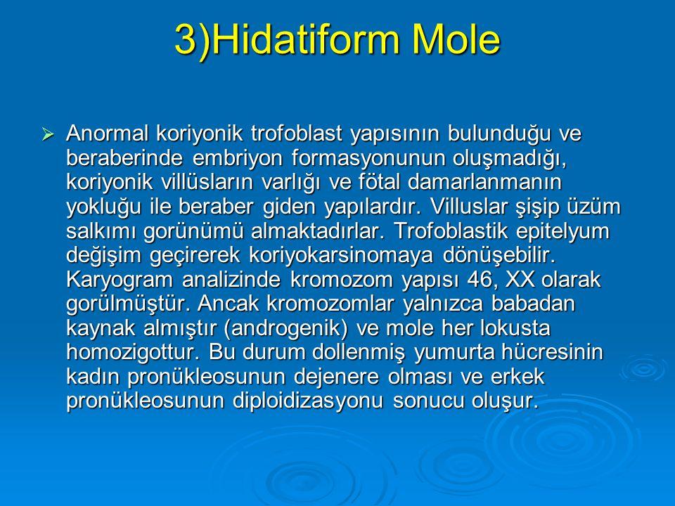 2)Kimerizm  Bazi bireylerde iki ayrı zigottan köken almış hücreler birarada olabilir.