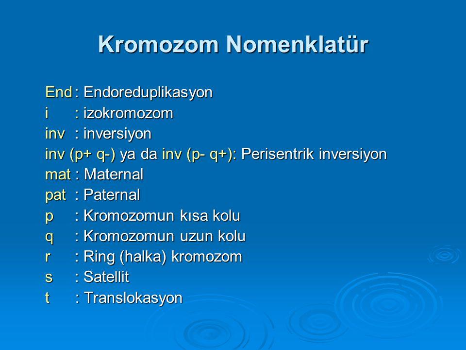 Kromozom Nomenklatür  Chicago'da kabul edilen şekliyle aşağıda gösterilmiştir. a) insan sitogenetiğinde kullanılan a) insan sitogenetiğinde kullanıla