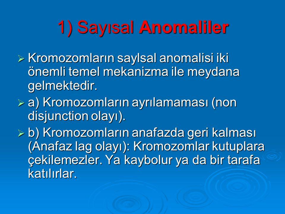 KROMOZOM ANOMALiLERi  Kromozom anomalileri iki grupta incelenebilir. 1) Sayısal anomaliler 1) Sayısal anomaliler 2) Yapısal anomaliler 2) Yapısal ano