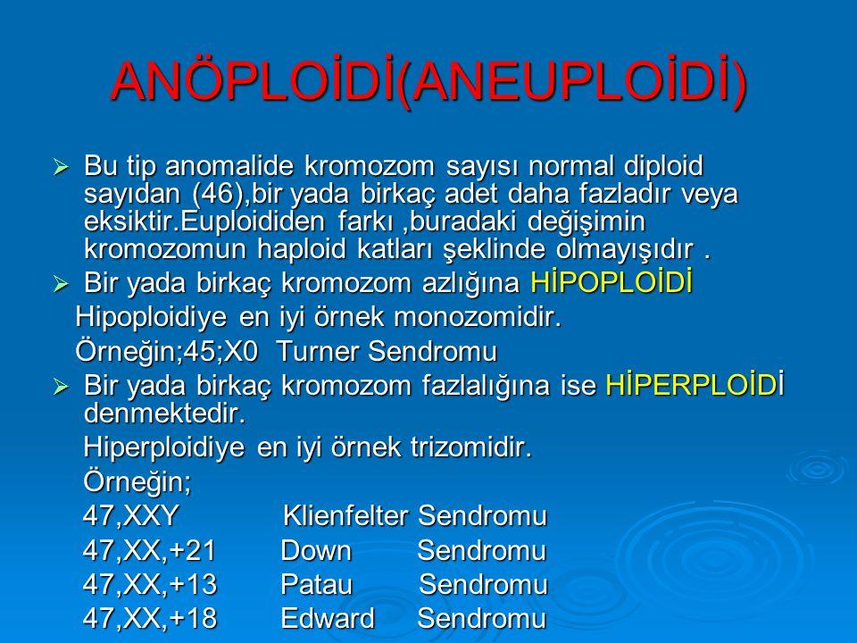 Sayı anormallikleri Poliploidi- Triploidi (3N) 69,XXX 69,XXY 69,XYY Yaşamla bağdaşmaz. Tetraploidi (4N) 92,XXXX 92,XXYY Yaşamla bağdaşmaz.