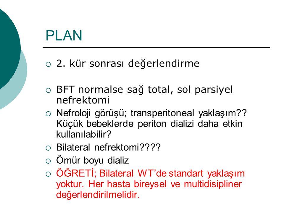 PLAN  2. kür sonrası değerlendirme  BFT normalse sağ total, sol parsiyel nefrektomi  Nefroloji görüşü; transperitoneal yaklaşım?? Küçük bebeklerde